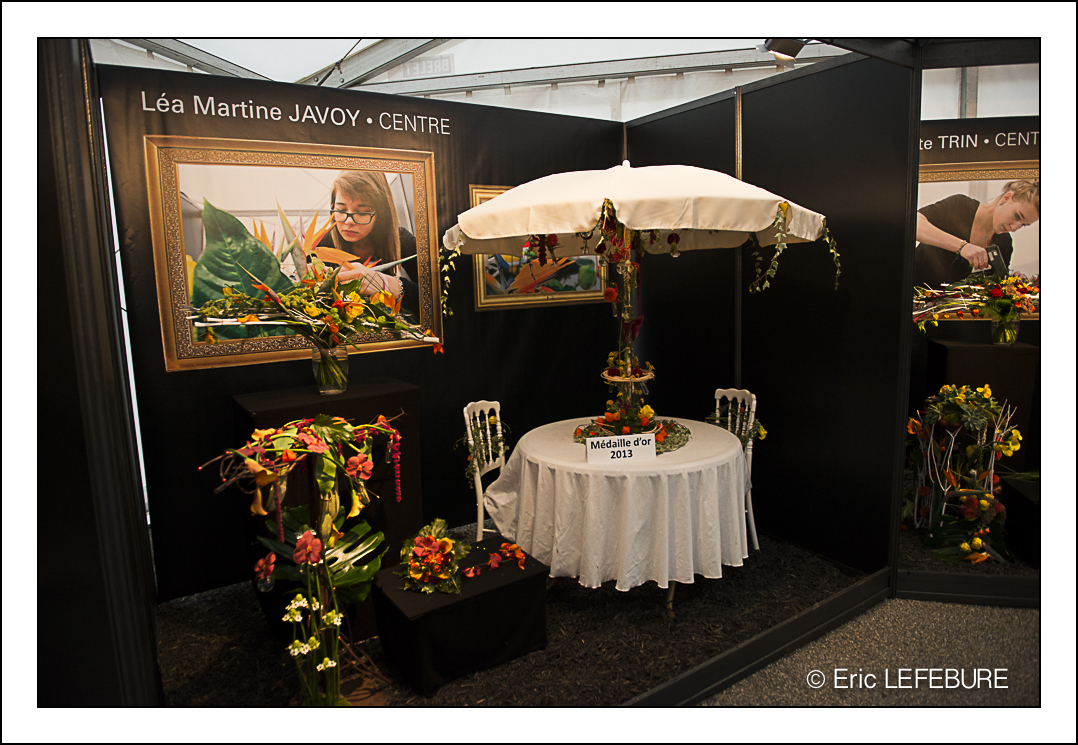 Folie flore 2013 parc expo de mulhouse for Repeindre sa chambre mulhouse