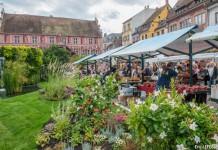 Fête de l'Oignon doré à Mulhouse