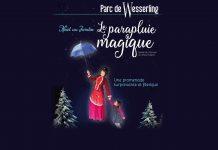 18 soirées féeriques en décembre - Parc de Wesserling