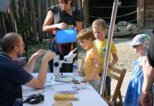 Les « petites bêtes du sol », à découvrir mercredi au Parc zoologique & botanique de Mulhouse